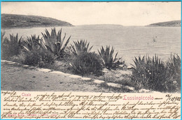 LUSSINPICCOLO ( Mali Losinj ) - Cigale ( Croatia ) * Travelled 1902. * Istria Croazia - Croatia