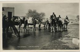 Perse Teheran  Camel Caravane Ecrite Teheran 1936 . Texte Insigne Fasciste . Souffrir Pour La Cause . Poster Cinéma - Iran