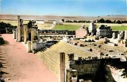 Algérie - Tébessa - Basilique Romaine - Le Grand Escalier - Semi Moderne Petit Format - Bon état - Tebessa