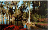 Florida's Cypress Gardens - Etats-Unis