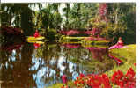 Winding Trails, Beautiful Flowers And Waterways At Florida's Famous Cypress Gardens - America's Tropical Wonderland - Etats-Unis
