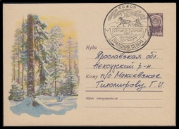1336 RUSSIA 1960 ENTIER COVER Used 1961 FESTIVAL NORD MURMANSK ARCTIC POLAR NORTH DEER FAUNA ETHNIC FOREST BOIS Mailed - Events & Commemorations