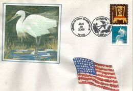 USA.  Aigrette Blanche Et Ibis. Oklahoma - Birds