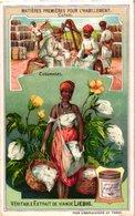 0900 Liebig 6 Cards  Matières Premières Pour L'habillement- ,+ Cuir-Soie-Ver à Soie-Laine-Moutons-Fourrure-Ours-Lin- - Liebig
