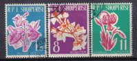SS1128 - ALBANIA , Yvert  Serie N.  552/554 - Albania