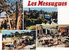 Cpsm 83  Var  Saint Raphael  Valescure Maison Familiale Les Messugues Du Comite D Entreprise Creusot Loire - Saint-Raphaël