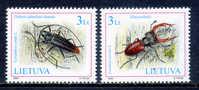 LITUANIA LITHUANIA / FAUNA INSECTOS ESCARABAJOS Insects Beetles / 3086 - Insectos