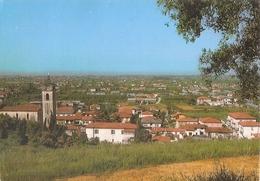 23/FG/10 - LUCCA - CAPEZZANO PIANORE: Panorama - Lucca