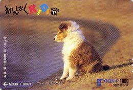 Carte Prépayée Japon / Série KIDS 2 - 17/51 - ANIMAL - CHIEN COLLEY - COLLIE DOG Japan Prepaid Metro Card - HUND - 397 - Japan