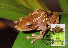 Carte Maximum CM Fidji - GRENOUILLE - FROG Maxi Card  - FROSCH Maxikarte - 01 - Frogs