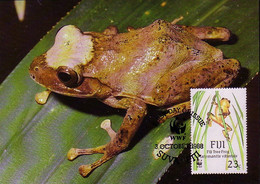 Carte Maximum CM Fidji - GRENOUILLE - FROG Maxi Card  - FROSCH Maxikarte - 02 - Frogs