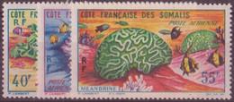 COTE DES SOMALIS N° 34/36**  PAR AVION NEUF SANS CHARNIERE - Côte Française Des Somalis (1894-1967)