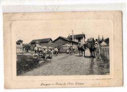 60-71 LEVIGNEN - Frankrijk