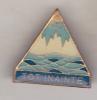 Romania Old Badge - Pioneer Organization - All Forward ( 4 ) - Organizaciones