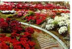 GENT - Gentse Floralien - Floralies Gantoises - Gent
