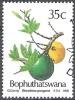 Bophuthatswana 1991 Michel 258 O Cote (2002) 1.00 Euro Plante Noix De Coco Cachet Rond - Bophuthatswana