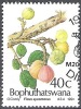 Bophuthatswana 1991 Michel 259 O Cote (2002) 1.20 Euro Figue Cachet Rond - Bophuthatswana