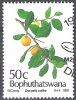 Bophuthatswana 1991 Michel 260 O Cote (2002) 1.60 Euro Umkokolo Cachet Rond - Bophuthatswana