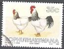Bophuthatswana 1993 Michel 290 O Cote (2002) 0.60 Euro Poules De Sussex Cachet Rond - Bophuthatswana