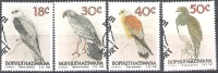 Bophuthatswana 1989 Michel 223 - 226 O Cote (2002) 7.00 Euro Oiseaux Cachet Rond - Bophuthatswana