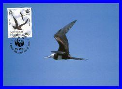 506 (Yvert) Sur Official Maximum Card - Faune Protégée Frégate Aigle-de-mer (Fregata Aquila) - Île De L'Ascension 1990 - Ascension (Ile De L')