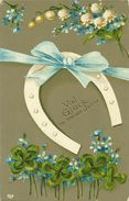 AK Neujahr Hufeisen Maiglöckchen Klee Color ~1905 #80 - Nieuwjaar