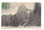 232- Chemin De Fer Des Rochers De Naye Devant La Dent De Jaman - VD Vaud