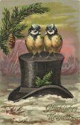 AK Neujahr New Year Vogelpaar Auf Zylinder Farblitho 1907 CH #95 - New Year