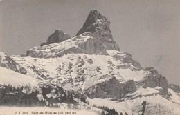 SUISSE - VAUD - Dents De Morcles. Julien Frères, Genève.Phot. Editeurs N° 7929 - VD Vaud