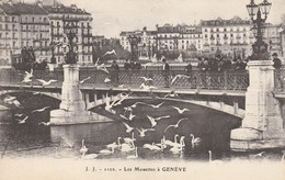 SUISSE - GENEVE. - Les Mouettes à Genève. Animée. ED. Julien Frères N° 1102. Belle Animation. - GE Geneva
