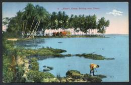 Limón. *Piuta. Ocean Bathing Near Limon* Ed. H. Wimmer Nº 9. Nueva. - Costa Rica