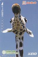 Carte Prépayée Japon - ANIMAL - GIRAFE - Série Animaux KEIO TAMA ZOO 5/6 - GIRAFFE Japan Prepaid Keio Card - 70 - Phonecards