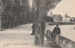Dép. 77 - MEAUX. - Promenade Des Trinitaires. Animée.  Edit. J. B. N° 65 - Meaux