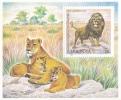 MOLDOVA  MOLDAVIE  MOLDAWIEN  MOLDAU ,  2001 , FAUNA ; Zoo Chisinau ; Lion ; Blok ;  MNH - Moldova