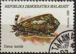 Madagascar 1992 Scott 1125 Sello * Moluscos Conus Textile 18A Michel 1419 Malagasy Madagascar Stamps Timbre Briefmarke - Madagascar (1960-...)
