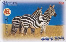 Télécarte Chine / Animal D'Afrique Jungle - ZEBRE - ZEBRA Early Prepaid Phonecard Telefonkarte - 27 - Chine