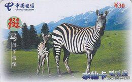 Télécarte Chine / Animal Jungle - ZEBRE & Son Petit - ZEBRA Early Prepaid Phone Card Telefonkarte - BE 28 - Chine