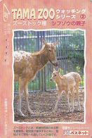 Carte Japon - Série TAMA ZOO N° 4/4 - Animal Cervidé - Biche & Son Petit - Deer & Fawn Japan Passnet Card - BE 33 - Phonecards