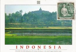 Vue Du Site De Borobudur.  ( Mahayana Buddhist Temple), Carte-maximum Indonesia. - Buddhism