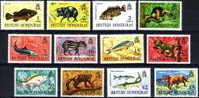 ( 1321 )  British Honduras  Fauna - Current Series - Marine Life - Mamals -Fish - Lion. - Otros