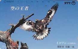 Télécarte JAPON / NTT 310-114 A - ANIMAL - TBE - Oiseau Rapace Aigle En Vol - JAPAN Raptor Bird Of Prey Phonecard - 1945 - Japón
