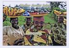 Document ETHNIQUE :  Jeunes Vendeuses De Fruits Et Légumes - Burundi