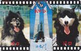 Télécarte Japon / 430-0248 - CHIEN Traîneau HUSKY / Film Antarctica - Sleddog DOG Japan Movie Phonecard - HUND TK - 624 - Chiens