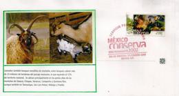 Protection De La Faune & Flore Des Forêts Tropicales  (Mexico Conserva)  FDC 2002 (Rainforest) - Mexique