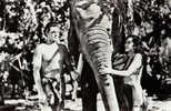 JOHNNY WEISSMULLER Et MAUREEN O'SULLIVAN - CARTE 'VRAIE PHOTO' ROUMAINE -> ACIN - ANNÉE: ENV. 1970 - ANCIENNE ! (i-030) - Schauspieler