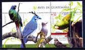 GUATEMALA / AVES Birds Vögel / C3306 - Pájaros