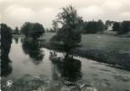 Jamoigne - La Semois En Amont Du Pont - Chiny