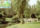 C.O.B. 2098: 50 Ans Du Parc De Mouscron - Maximumkaarten