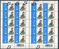 Buzin - Belgien - Belgique - Belgium - Belgie - Michel 3797 - COB 3750 Tannenhäher - ** Mnh Neuf - Vögel Oiseaux Birds - Abarten Und Kuriositäten