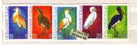 BULGARIA / Bulgarie 1981 BIRDS - EXPO 81 5 V.- MNH - Birds